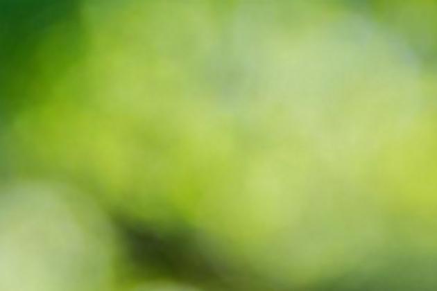 grün-melierte Kachel